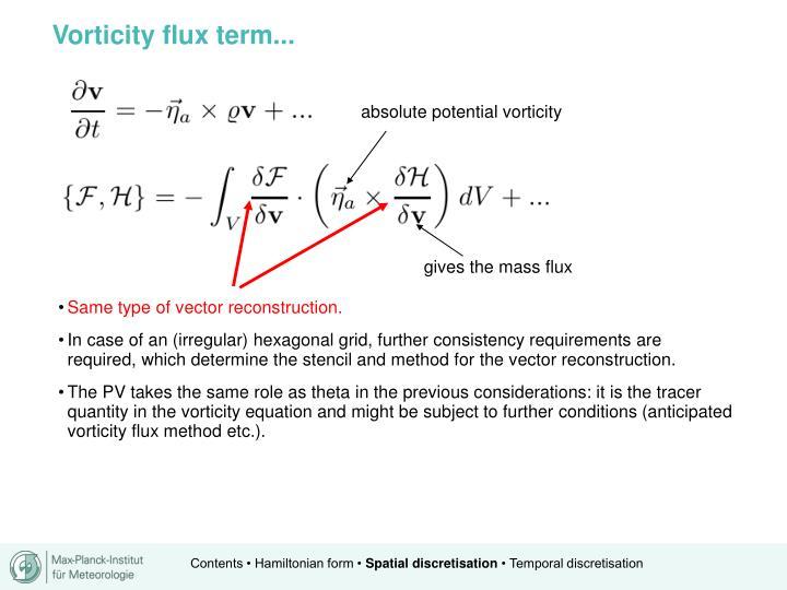 Vorticity flux term...
