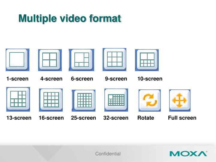 Multiple video format