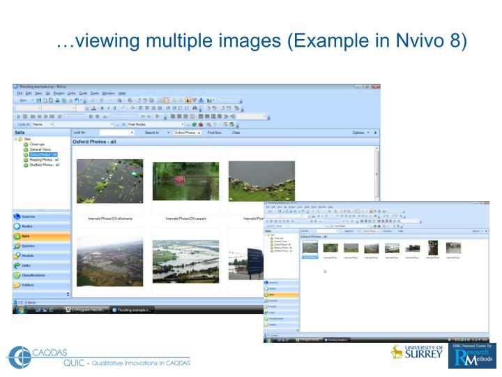 …viewing multiple images (Example in Nvivo 8)