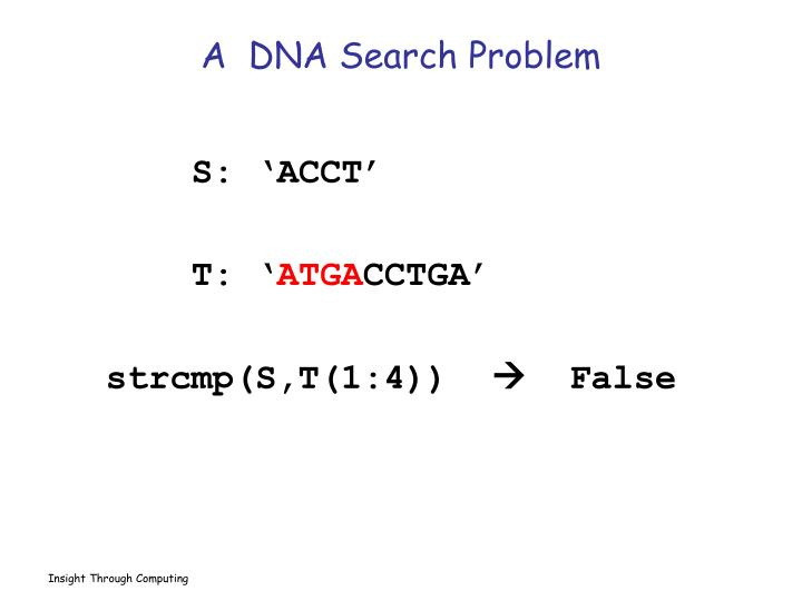A  DNA Search Problem