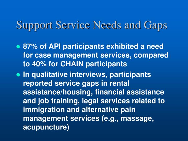 Support Service Needs and Gaps