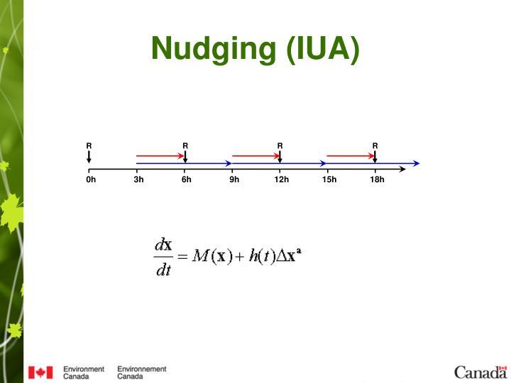 Nudging (IUA)