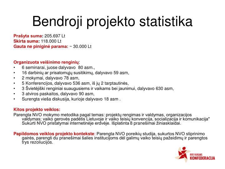 Bendroji projekto statistika