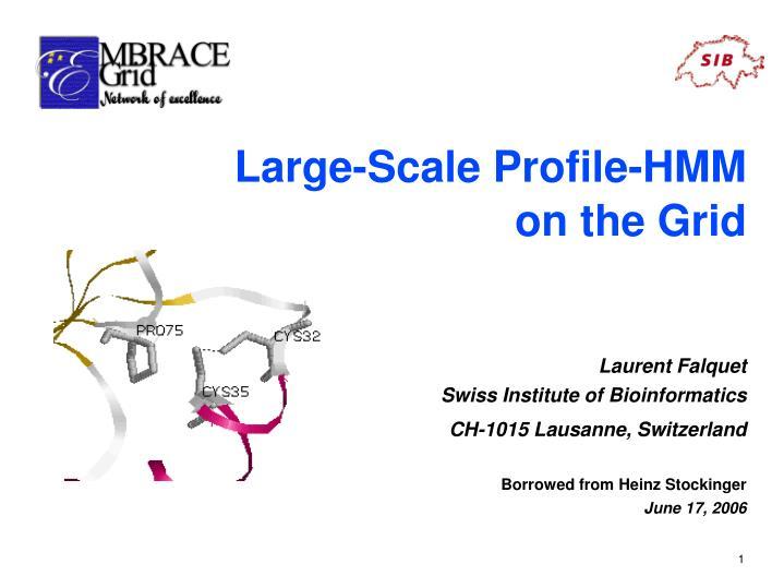 Large-Scale Profile-HMM