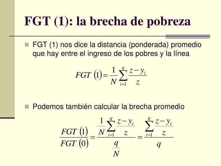 FGT (1): la brecha de pobreza