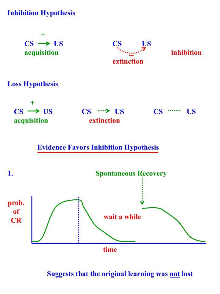 Inhibition Hypothesis