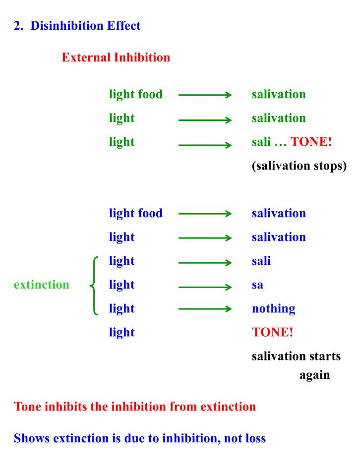 2.  Disinhibition Effect