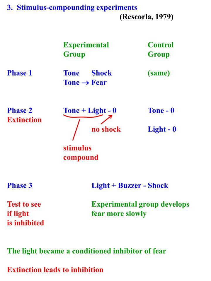 3.  Stimulus-compounding experiments