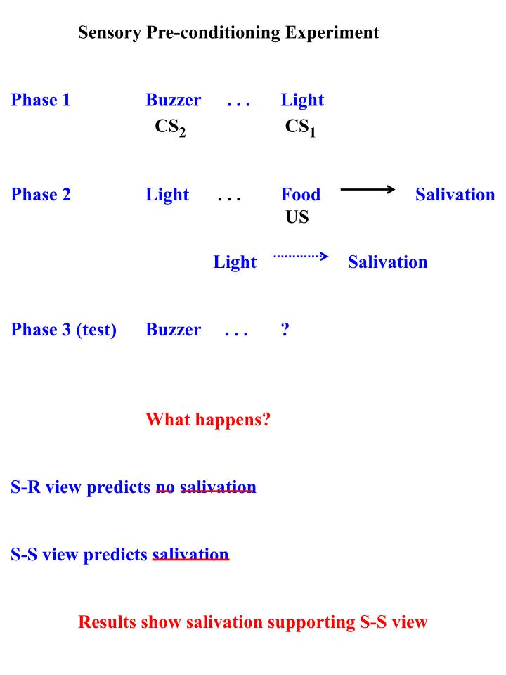 Sensory Pre-conditioning Experiment