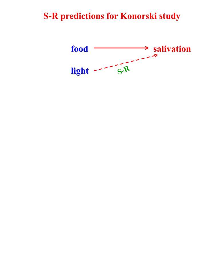 S-R predictions for Konorski study