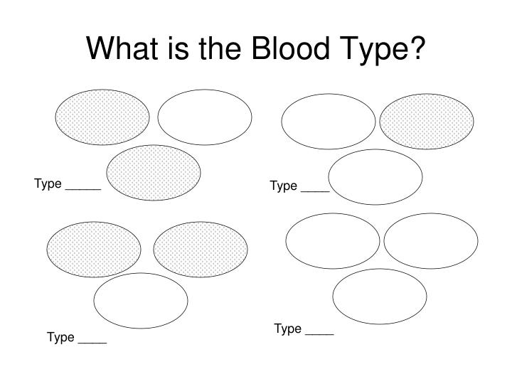 What is the Blood Type?