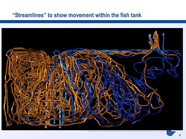 """""""Streamlines"""" to show movement within the fish tank"""