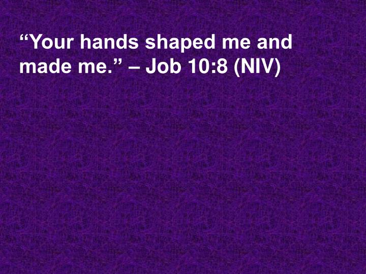 Your hands shaped me and made me job 10 8 niv