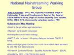 national mainstreaming working group