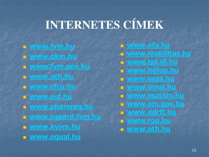 INTERNETES CÍMEK