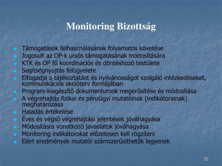 Monitoring Bizottság