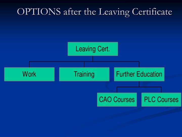 OPTIONS after the Leaving Certificate