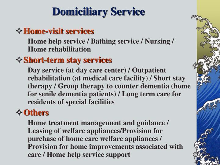 Domiciliary Service