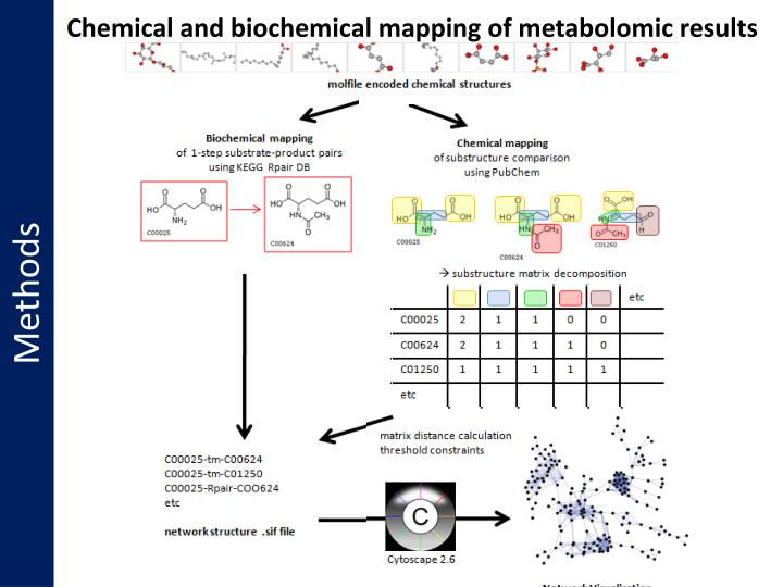 Chemical and biochemical mapping of metabolomic results