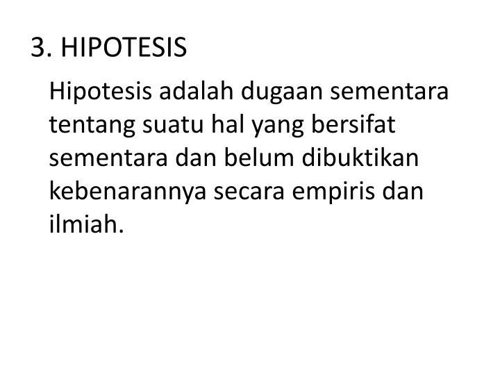 3. HIPOTESIS