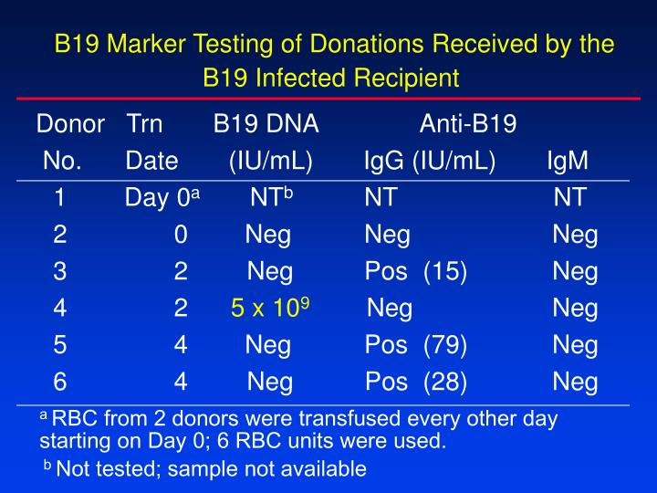 B19 Marker Testing of Donations Received by the B19 Infected Recipient