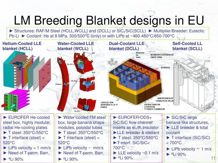 LM Breeding Blanket designs in EU