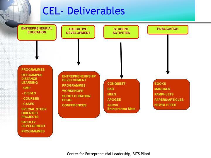 CEL- Deliverables