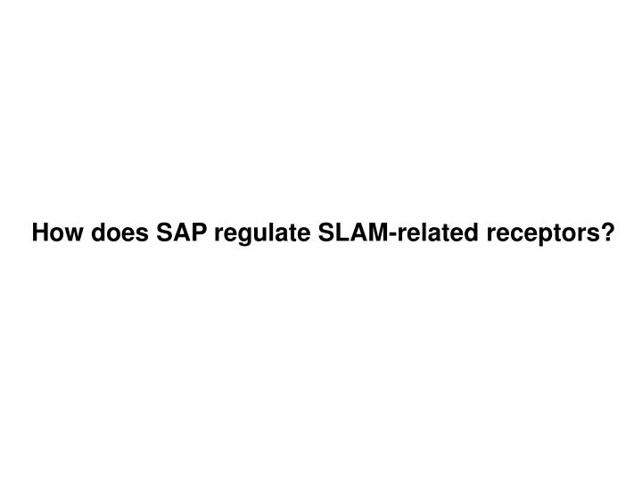 How does SAP regulate SLAM-related receptors?