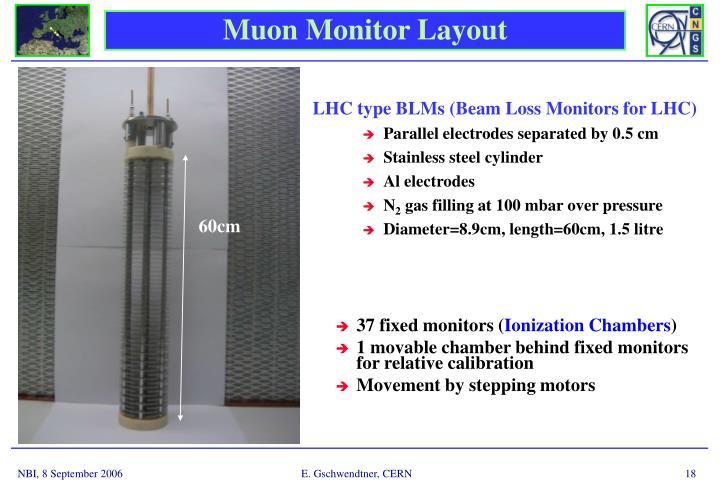 Muon Monitor Layout