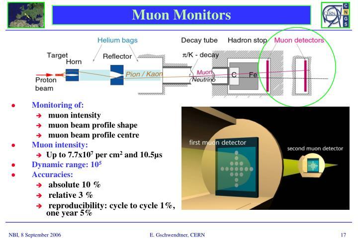 Muon Monitors