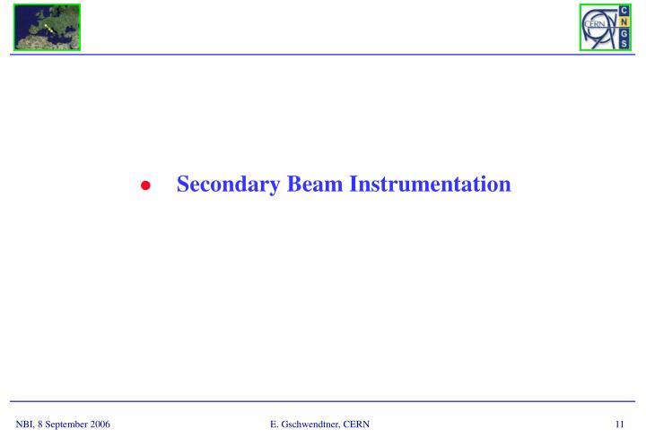 Secondary Beam Instrumentation