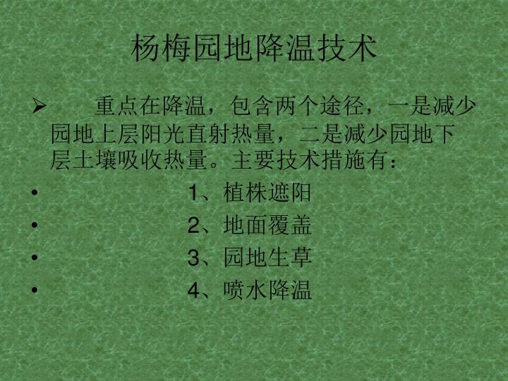 杨梅园地降温技术