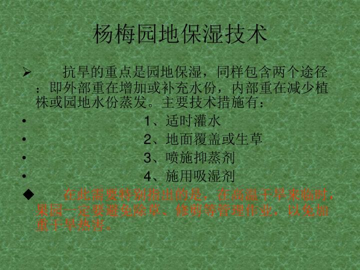 杨梅园地保湿技术