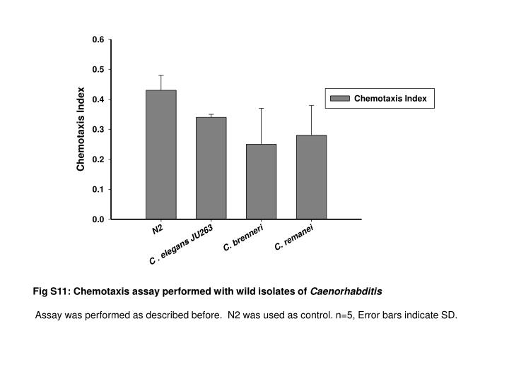 Fig S11: Chemotaxis assay performed with wild isolates of