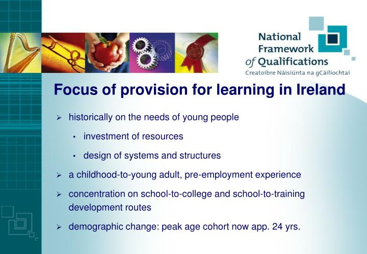 Focus of provision for learning in Ireland
