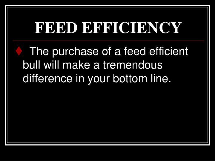 FEED EFFICIENCY