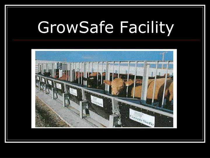 GrowSafe Facility