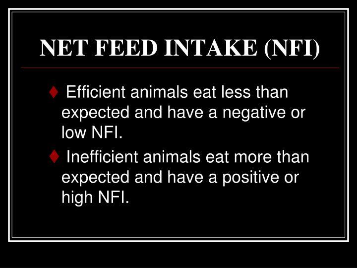 NET FEED INTAKE (NFI)