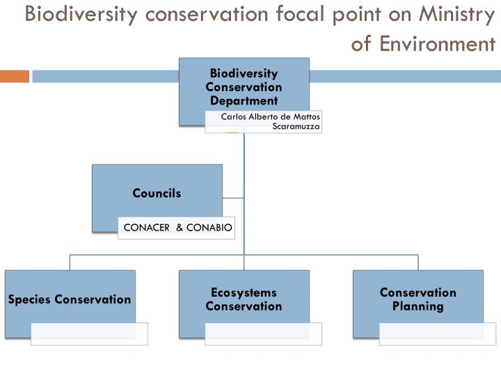 Biodiversity conservation focal point on Ministry of Environment