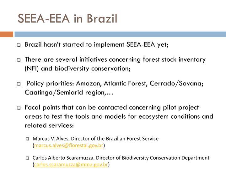 SEEA-EEA in Brazil