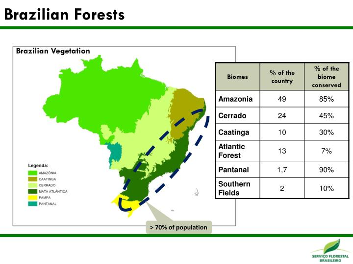 Brazilian Forests