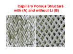 capillary porous structure with a and without li