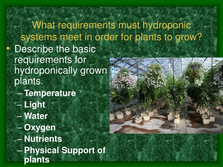What requirements must hydroponic systems meet in order for plants to grow?