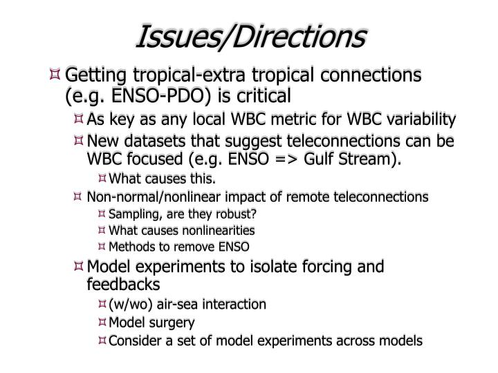 Issues/Directions