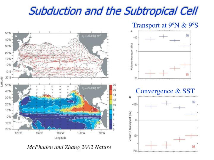 Subduction and the Subtropical Cell