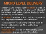 micro level delivery