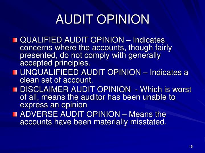 AUDIT OPINION