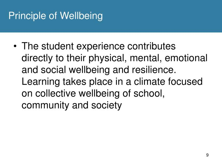 Principle of Wellbeing