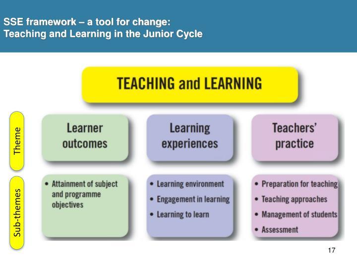 SSE framework – a tool for change: