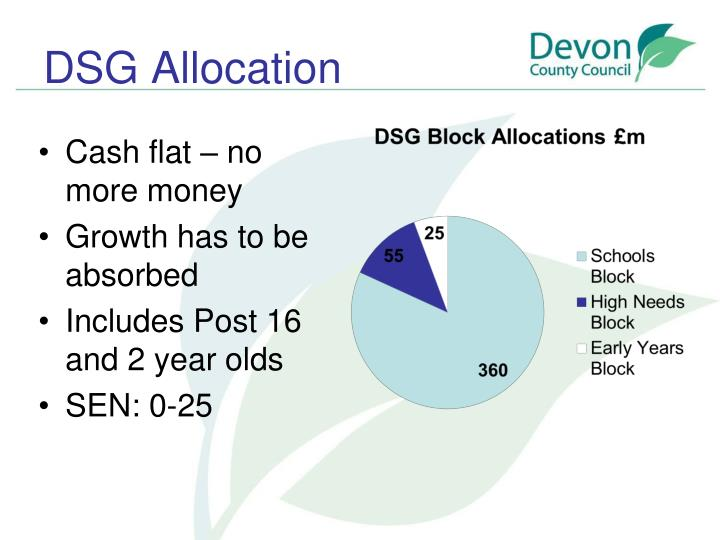 DSG Allocation